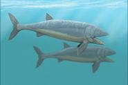Leedsichthys problematicus restoration