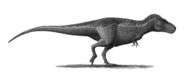 Restoration of T-rex with sparse feathers
