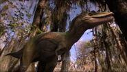 Albertosaurus walk