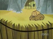 Dexter's Lab Bears