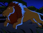 Wild Thornberrys Lion