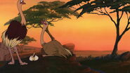 Lion-king2-disneyscreencaps com-2096