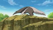 Anteater Naruto