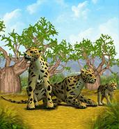 Leopard ZT