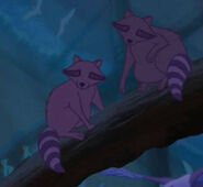 Raccoon, North American (Fantasia 2000)