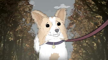 Phil (Dog)