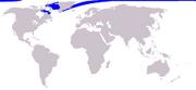 220px-Cetacea range map Narwhal