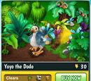 Yoyo the Dodo
