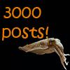 3000 posts
