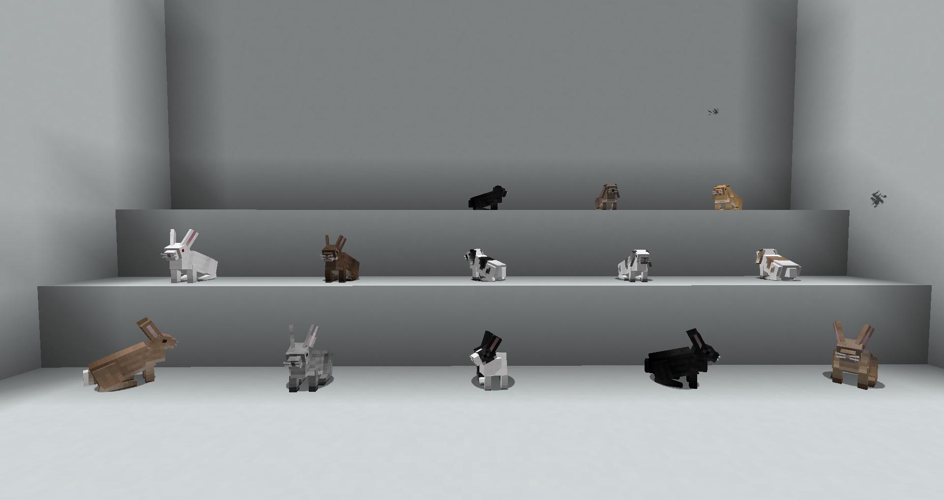 Rabbits | Animania Wiki | FANDOM powered by Wikia