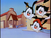 Wikia-Visualization-Main,animaniacs