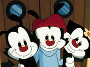 Yakko-Wakko-And-Dot-animaniacs-29140823-588-441