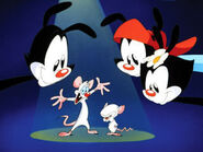 Animaniacs-animaniacs-5395751-320-240
