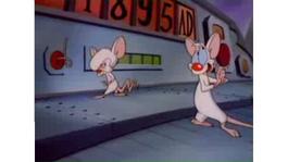 Cuando los ratones dominen la tierra