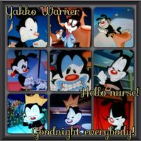 Yakko Warner Goodnight Everybody