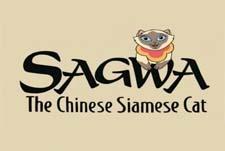 Sagwa the Chinese Siamese Cat title card