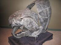 Crâne de Dunkleosteus