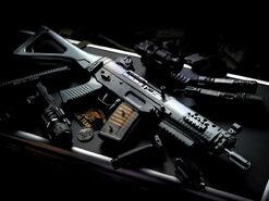 Josh's gun