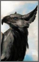 Птица Судьбы1134
