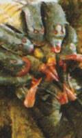 Spidertron(MM1PR)