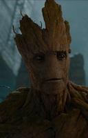 Groot (1)