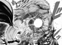 One-Punch Man (5)
