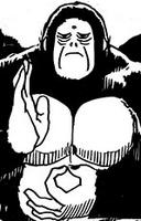 Kannon Gorilla