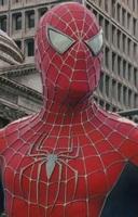 Spider-96283 (3)