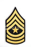 Army Sgt. Major
