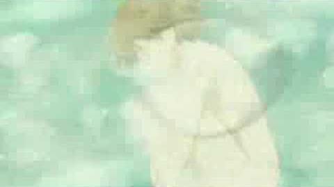 Haibane Renmei Opening - Free Bird