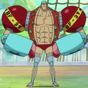 Franky Anime Post Timeskip Infobox