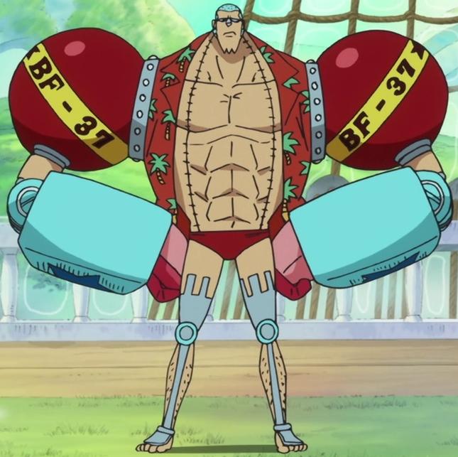 <b>Franky</b> | Anime And Manga Universe Wiki | FANDOM powered by ...