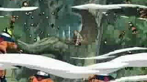 Taju Kage Bunshin no Jutsu