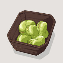 Fava Beans (Nobu)