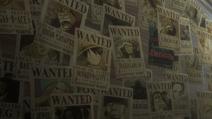 Myriad of Bounties (One Piece Stampede)
