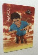 Marco morph card (elephant)