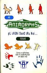 Animorphs 33 illusion italian stickers adesivi