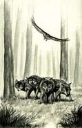 Animorphs morphed as wolves The Encounter Japanese illustration