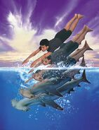 Animorphs escape book 15 marco shark cover image