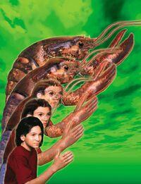 Marco Lobster Morph