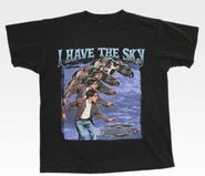 I have the sky shirt front