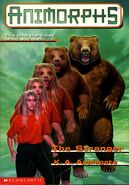 Book 7 The Stranger front cover