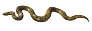 Anaconda book 53 cover morph