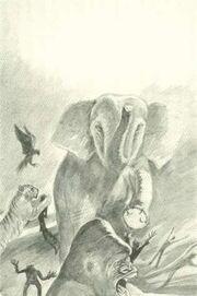 Animorphs fight at the yeerk pool book 1 The Invasion Japanese Illustration