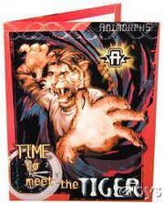 Animorphs School folder 6 meet the tiger