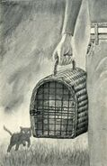 Fluffer McKitty in cat carrier The Visitor Japanese illustration