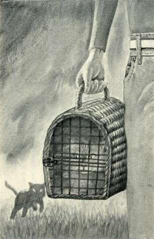 File:Fluffer McKitty in cat carrier The Visitor Japanese illustration.jpg