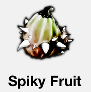 SpikyFruit