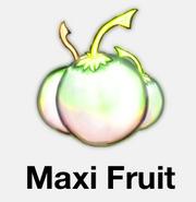 Maxi Fruit