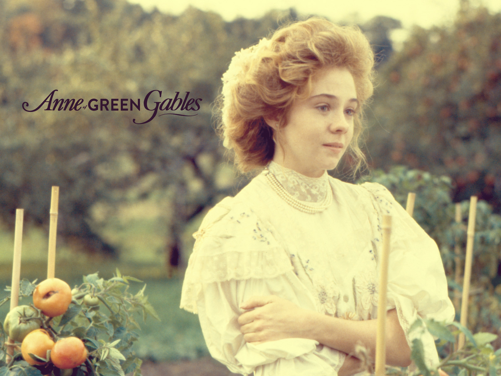 gallery anne of green gables the sequel wallpapers anne of green gables wiki fandom powered. Black Bedroom Furniture Sets. Home Design Ideas